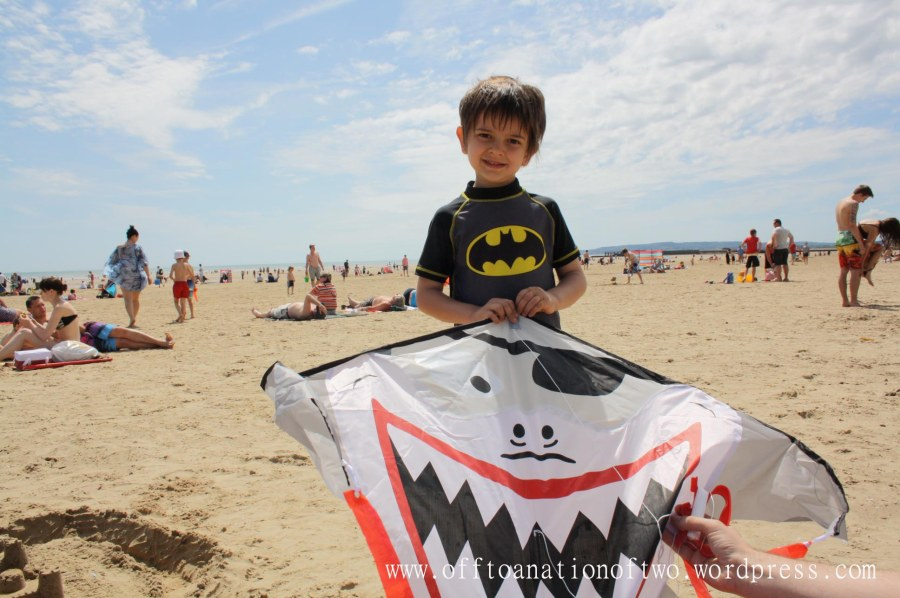 shark kite at Camber Sands